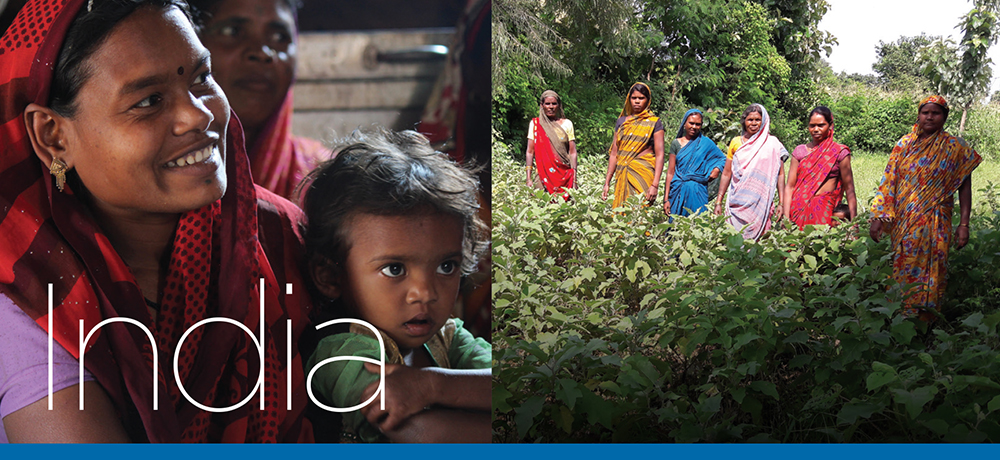 ELCA World Hunger's 40 Days of Giving - India