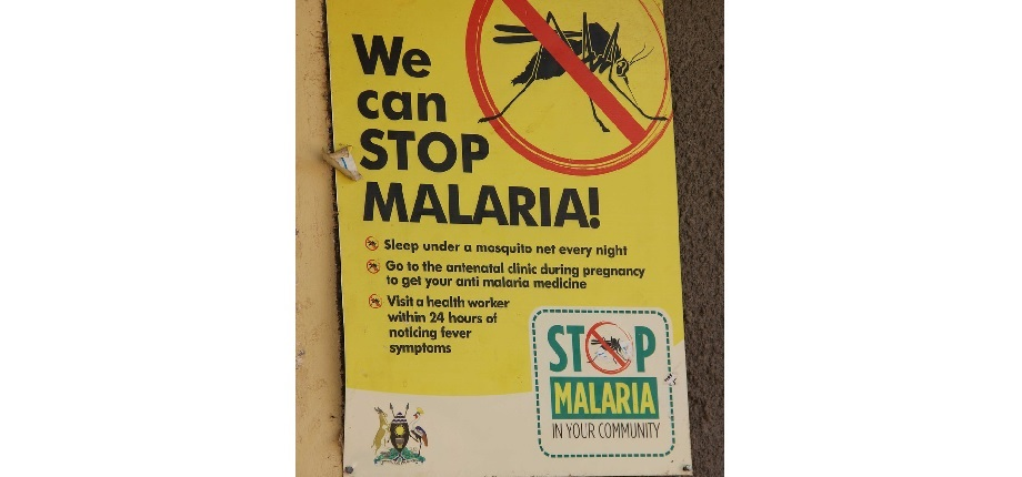 Progress in the malaria fight